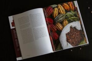 SchokoladeSchokolade - a Book Review